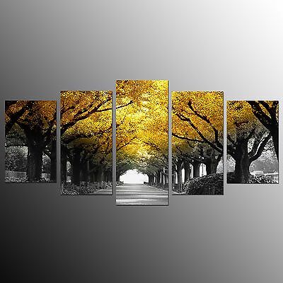 FRAMED Large Canvas Art Print Tree Road Wall Home Decor Canvas Oil Painting-5pcs