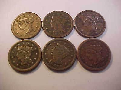 6  Braided Hair Large Cent Vg - Vf 1843 - 1851 Nice Original Coins Great Lot
