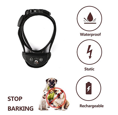 Collier Anti-aboiement rechargeable réglable Son Chien Animal Bark Collier