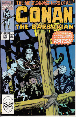 Marvel Conan the Barbarian, #236, 1990, Michael Higgins, Rodney Ramos