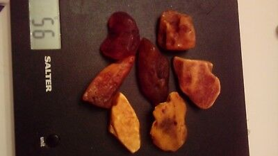 7 Natural Raw Baltic Amber 56 gr.