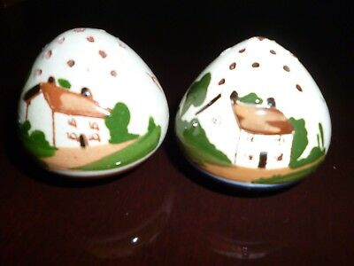 Vintage Salt And Pepper Pot Devon/torquay Mottoware
