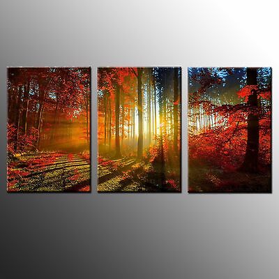 FRAMED Large Wall Art Canvas Print Light in Forest Painting Print Home Decor-3pc