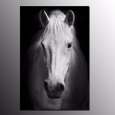 HD Canvas Print Animals Horse Oil Painting Wall Art for Home Office Decor