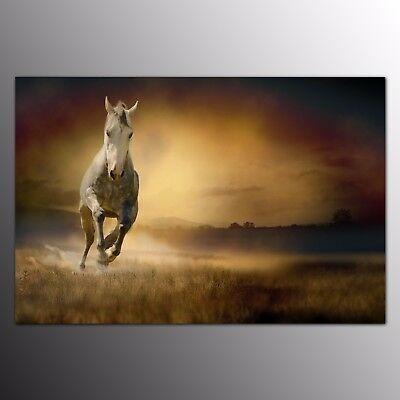 HD Canvas Print Art for Home Decor Running Horse Wall Art Painting Poster