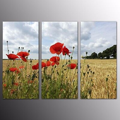 HD Modern Canvas Prints for Home Decor Wild Flowers Wall Art Picture-3pcs