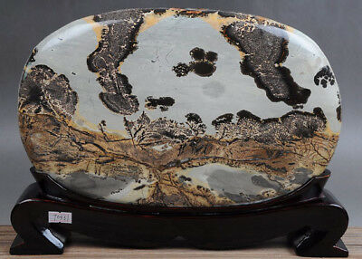 UNIQUE GUOHUA STONE~~BONSAI SUISEKI~~Abstract Painting IN Gold AUTUMN