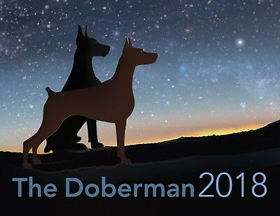 Beautiful 2018 Doberman wall calendar by Leslie Hall