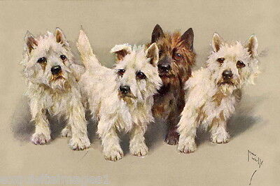 Vintage Art~A.Wardle~Four Cairn Terrier Puppy Dog Dogs~ NEW Large Note Cards