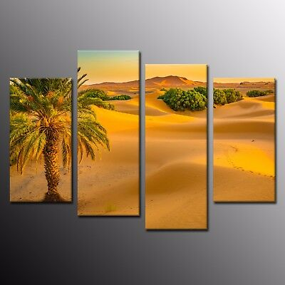 Modern Canvas Print Art Cactus Flowers in Desert Poster Canvas Oil Painting 4pcs