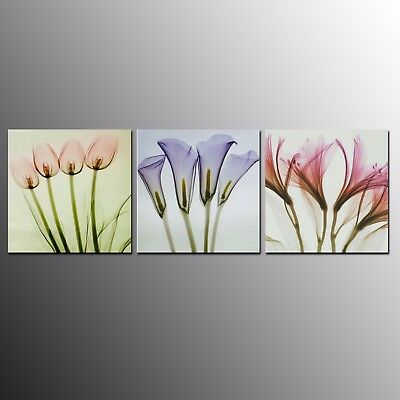 Modern Home Decor Canvas Painting Print Picture Art Abstract Flowers 3pcs