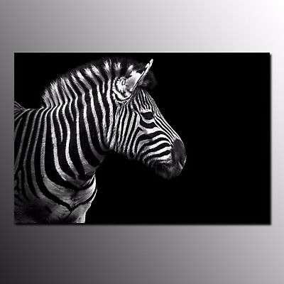 Animal Canvas Print Poster Zebra Wall Art Painting For Home Office Decor