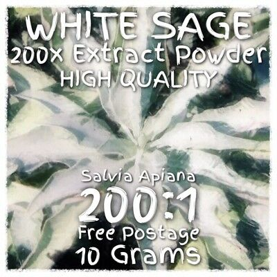 White Sage (Salvia Apiana) 200x Extract Powder [10 Grams]