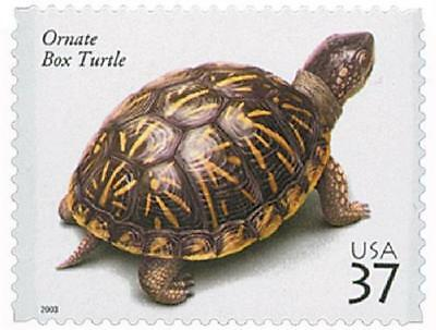 SPECIAL! Ornate Box Turtle Reptiles and Amphibians Commemorative US Stamp MINT!