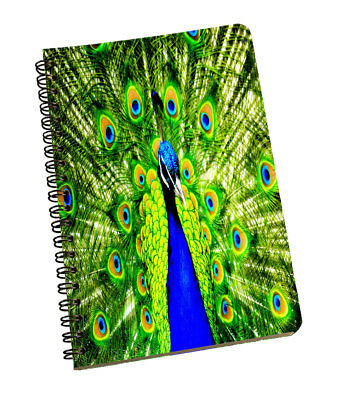 Spiral Notepad Peacock Personal & Professional Use Writing Space Green