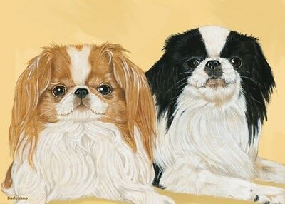 Japanese Chin Blank Note Card