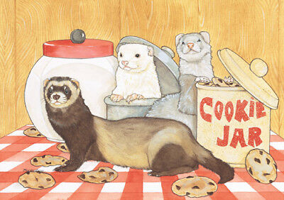 Ferret Note Cards