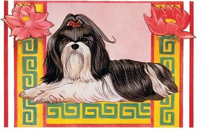 Shih Tzu Blank Note Card