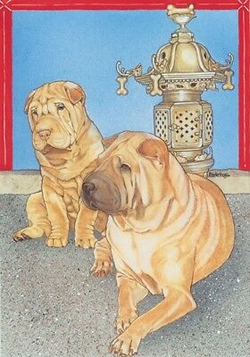 Shar-pei Note Cards