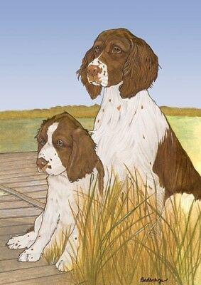 English Springer Note Cards