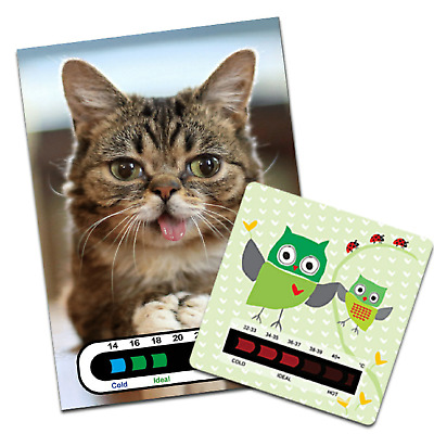 Baby and Child Kitten Nursery Room Thermometer and Owl Bath Water Thermometer