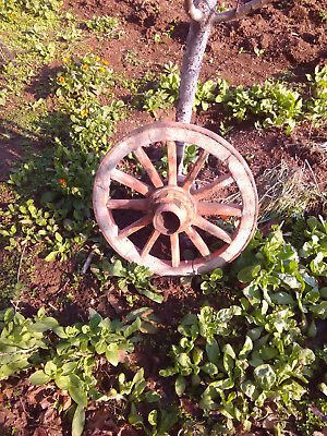 ANTIQUE AUTHENTIC WOODEN HUB WAGON WHEEL, 19th century, Eastern Europe