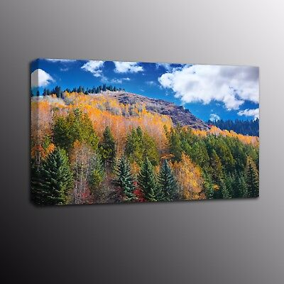 Landscape Photo Canvas Prints Forest Canvas Poster Wall Art Painting Picture