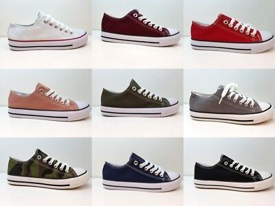 Ladies Womens Flat Lace Up Shoes Star Hi Lo Tops Girls Plimsolls Canvas Trainers