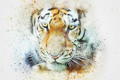 Tiger Abstract Watercolour Art Giant Poster - A5 A4 A3 A2 A1 A0 Sizes