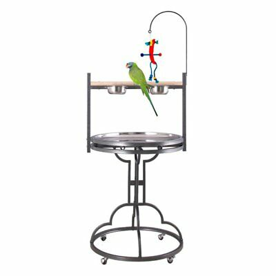 HQ Wrought Iron Parrot Play Stand