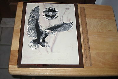 "Plaque ""afsa"" Air Force Sergeants Association Mcmlxi Eagle Plaque On Wood Look!"