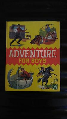 Purnell Adventure For Boys Vintage Retro Hardback Book
