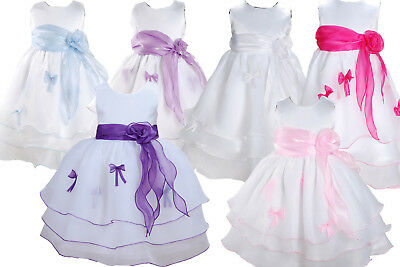 Baby Party Dress Christening Dress Flower Girl Dress 3 6 9 12 18 24 Months