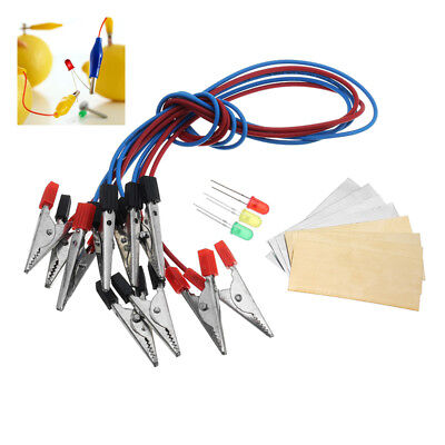 Fruit Battery Light Diode Science Kit Orange Potato Lemon Battery Physi