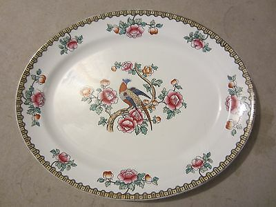 "Antique F. Winkle Whieldon Ware PHEASANT 14 1/2 x 11 1/2"" Oval Platter"