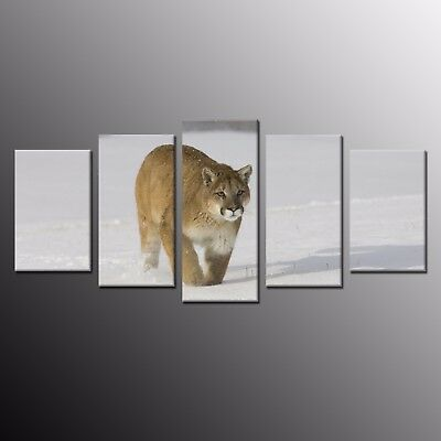 Modern Animal Wall Art Home Decor Leopard Snowfield Canvas Print Painting-5pcs