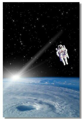 Poster Astronaut on the Moon Earth Planet A Men Drink Beer USA Flag Print 12