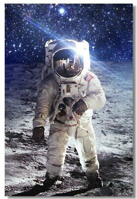 Poster Astronaut on the Moon Earth Planet A Men Drink Beer USA Flag Print 10