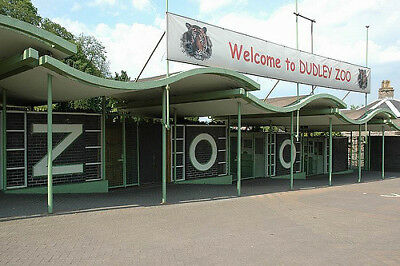 Dudley ZOO voucher/ticket admits 2 People for just £16.50 Valid til 31/12/ 2018