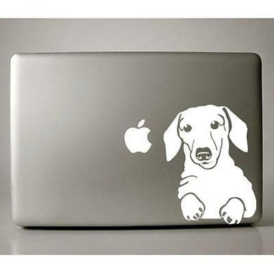 Dachshund Large White Vinyl Decal - NEW - FREE SHIPPING - Mailed ASAP