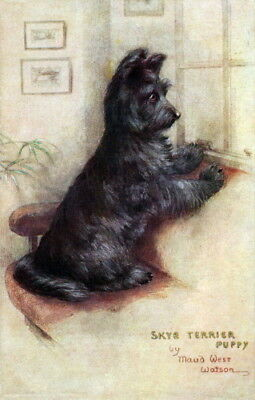 c1910~Maud West Watson~Skye Terrier Puppy Dog Watches & Waits~NEW Lg Note Cards
