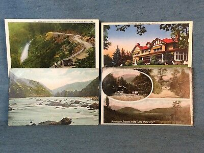 Lot Of 4 Original Antique Asheville Western North Carolina Postcard Stamped Neat