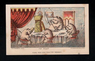 "Original 1882 Trade Card - Dr Haas Hog & Poultry Remedy - ""THE FEAST"