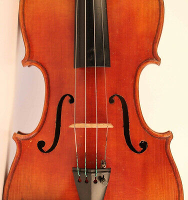 alte geige labeled SGARBI 1896 violon old italian violin cello viola 小提琴 ヴァイオリン