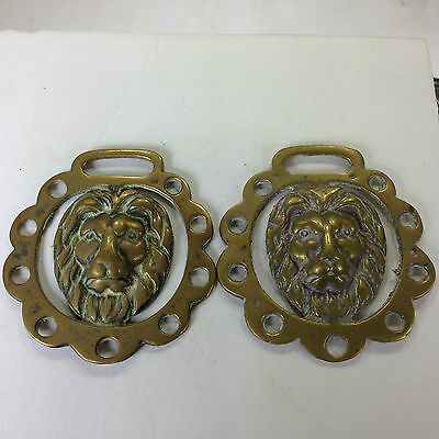 "Horse Brass, Perfect Pair Of Lion Heads , 3""largest Diameter  Cast"