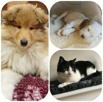 💕Dog cage/crate mat.Non-slip fleece,bed,mat.Washable,warm,hygienic.XS-L.MadeUK