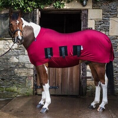 Snuggy Hoods Lycra Body Rug - Horse Lycra Bodysuit - Belly Coverage - 3 Colours