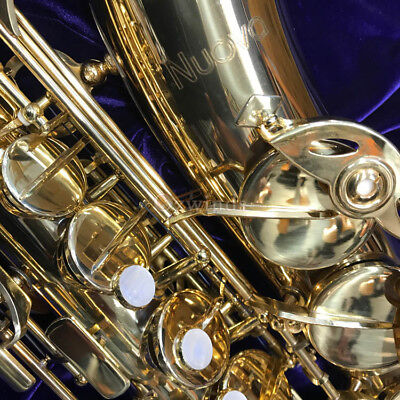 Nuova Student Alto Saxophone by Jupiter with Contoured Case