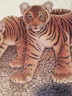 Bengal Tiger Cubs Lithograph  Print Signed Jim Oliver  Plate #44