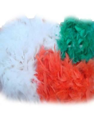 St Patricks Day Ireland Flag Tri Colour Feather Boa Fancy Dress Paddys Fluffy